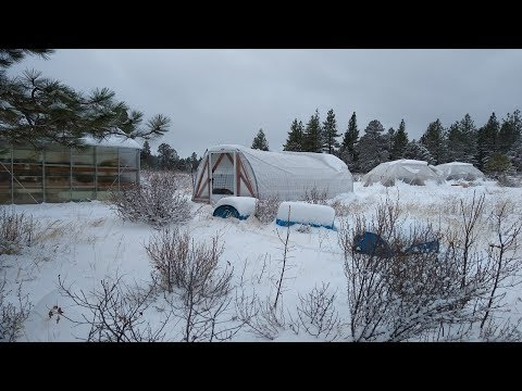 How Much Snow Can Our Greenhouses Handle?