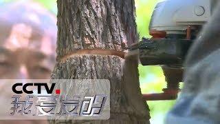 《我爱发明》 20190430 创意大作战 4| CCTV科教