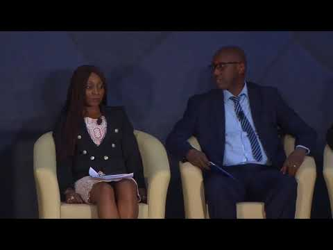 Aviation Development Conference 2017 The National Carrier conundrum