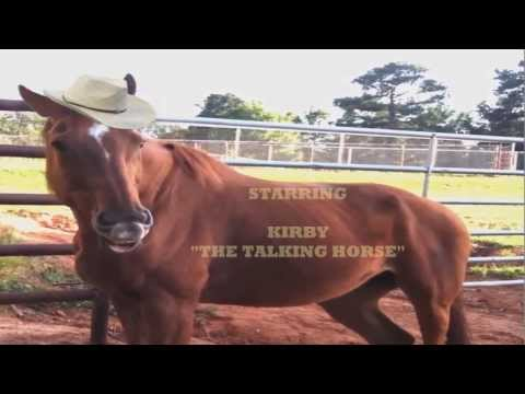 "Kirby ""THE TALKING HORSE"" - Retirement Day"