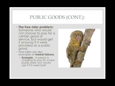 Public Goods, Externalities and Market Failures