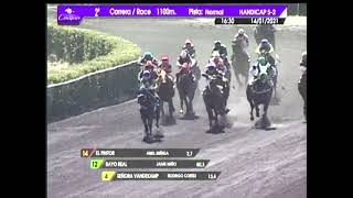 Vidéo de la course PMU PREMIO CHOCO PANDA