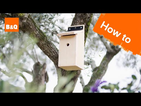 How To Build A Bird Box