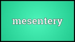 Mesentery Meaning