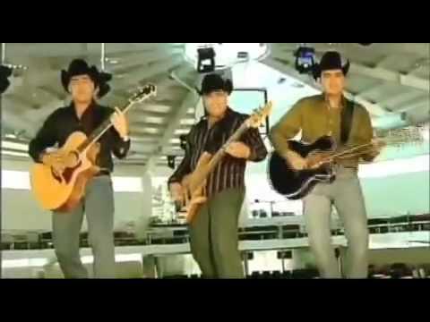 Musica Sierreña Requinto Sierreño Youtube