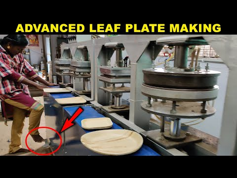 HOW? Areca Leaf Plates Making | Disposable and Bio-Degradable | Factory Explorer