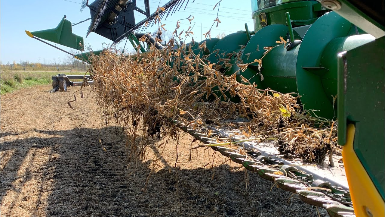 Download First day of harvest 19 combines stuck.