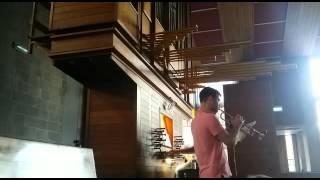 Psalm 146 orgel en trompet (gezang 446 Johannes de Heer)