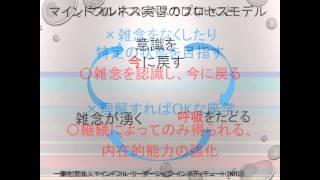 マインドフルネストレーニングの方法(一般社団法人マインドフルリーダーシップインスティテュート) thumbnail