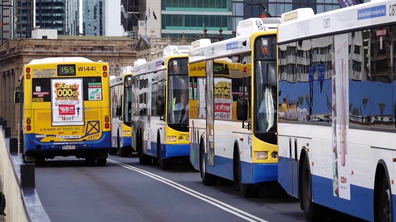 Brisbane Translink Buses Youtube