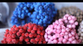 Видеообзор калины для флористики, декора и творчества / DIY, МК, хендмейд