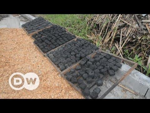 Greener coal from banana skins | DW English