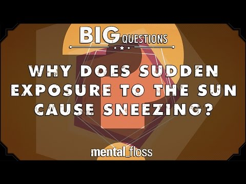 Why does sudden exposure to the sun cause sneezing?  - Big Questions - (Ep. 216)