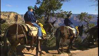 Grand Canyon for Kids DVD - National Park