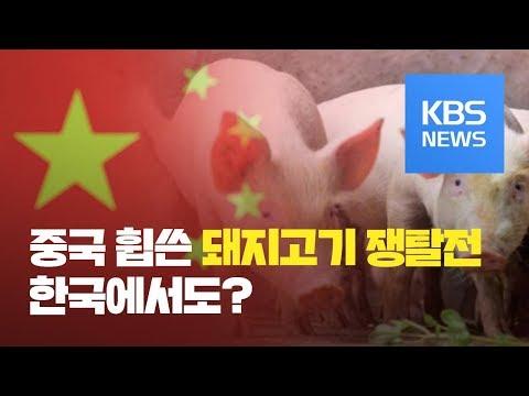 중국선 돼지고기 쟁탈전…우리나라서 재연되나 / KBS뉴스(News)