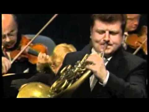 Mozart 1st French Horn Concerto Shreds