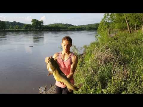 Flathead Catfishing with Cut Bluegill Bait - Missouri River Bank- 10 lber