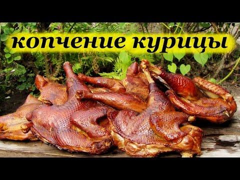 Рецепт копчения курицы и маринования в коптильне горячего копчения
