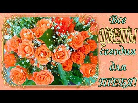 !НАЖИМАЙ! Сегодня, все цветы для ТЕБЯ!