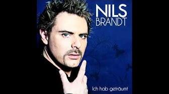 Nils Brandt - Ich hab geträumt