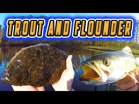 KILLER North Carolina TROUT ACTION! (+FLOUNDER SURPRISE!)