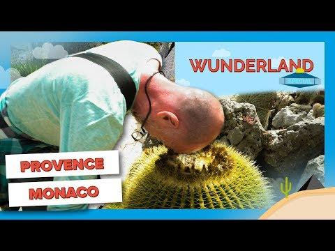 Reich und schön #2: Ein Kurztrip nach Provence & Monaco