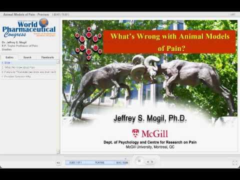 hqdefault - Animal Models Of Back Pain