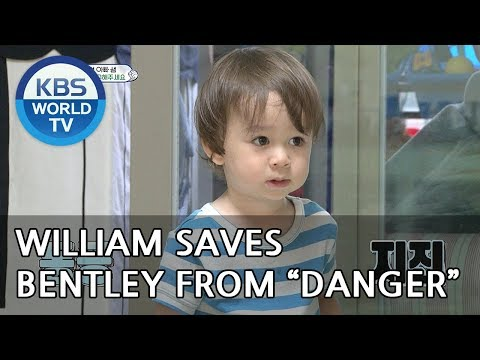 """Will William save Bentley from """"Danger""""?! [The Return of Superman/2018.06.10]"""