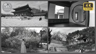 〖4K〗[Black & White KOREA] …