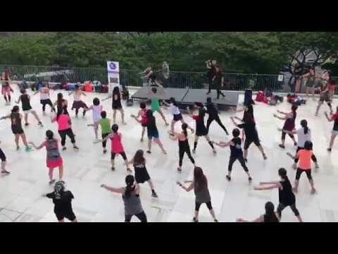 Home - Kkardio Dance