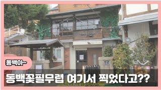 [동백꽃필무렵] #구룡포 #동백이 #촬영지 #여명의눈동자