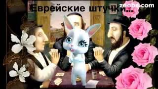 Зайка ZOOBE 'Уржаться можно №50 -Еврейские штучки!'