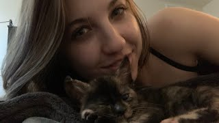 ASMR 🥺🐱Foster Kitten Cuddles 🥰 Gentle Whispers & Purring