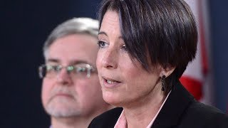 One of Canada?s biggest civil service unions is calling on the federal government to scrap the troubled Phoenix pay system. PIPSC president Debi Daviau says government IT workers can build a better system from scratch. (The Canadian Press)