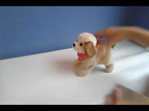 Mi perro saltarin from YouTube · Duration:  1 minutes 43 seconds