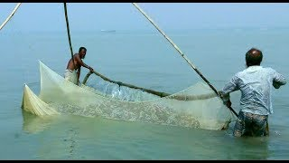 small fish - catching freshwater fish in river - tropical fishing net trap