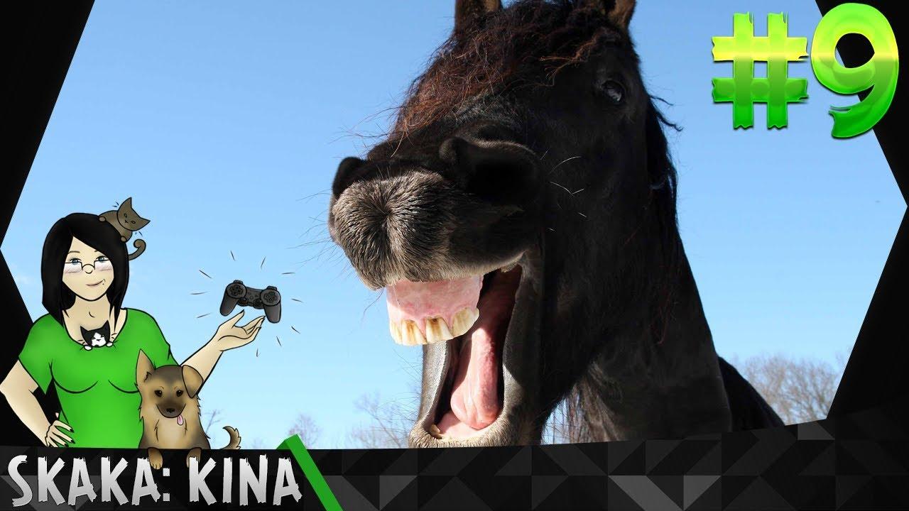 Intryga jak w telenoweli – Konie i kucyki: Akademia jazdy konnej #9