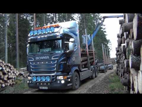 Scania R730 Timber Truck Loading