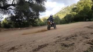 Pit bike 140 yx