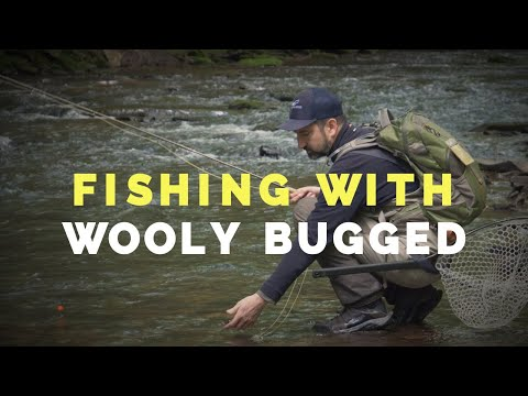 PA Fly Fishing With Wooly Bugged