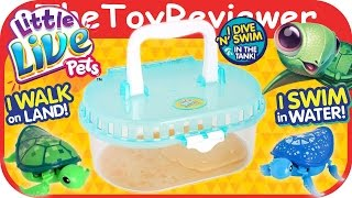 Little Live Pets Turtle Tank + Digi Unboxing Toy Review By TheToyReviewer