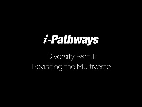 Diversity Part II: Revisiting the Multiverse