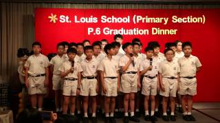 聖類斯小學 Class 6B 2015