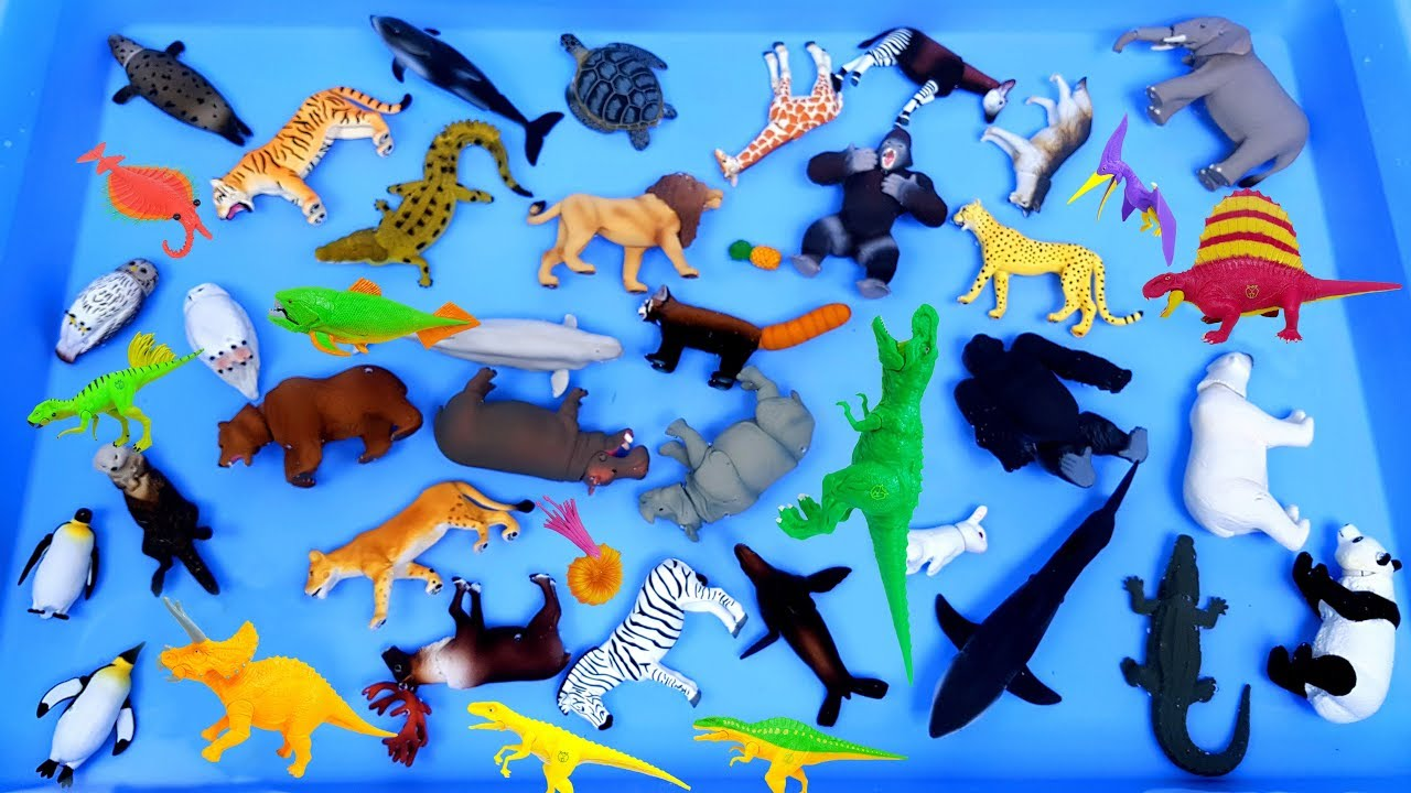 Lots of Zoo Animals Toys, Sea animals Farm animlas, Learn animals names video for kids  동물 공룡 장난감