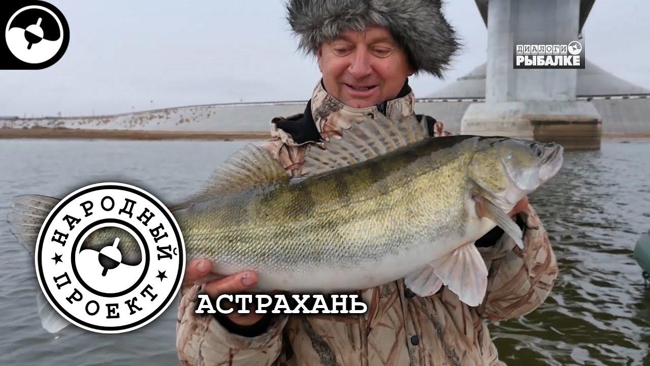 Ведущие программ о рыбалке