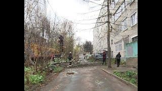 В Ярославле ликвидируют последствия ночной стихии
