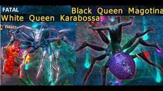 Drakensang Online - New Moon Drop White Queen Karabossa + Black Queen Magotina in Fatal