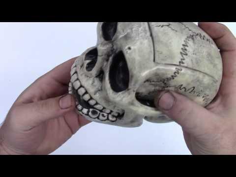 Leifkicker Studio - Skull Deck Box