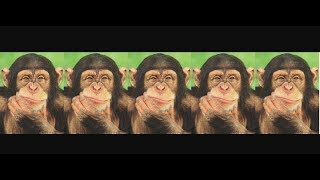 Five Little Monkeys Jumping on the Bed | Kids Nursery Rhyme & Poem | Children Love to Sing
