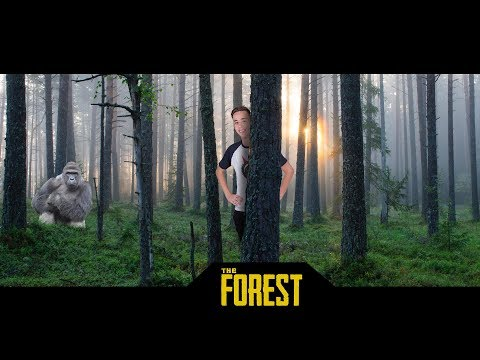 JÉZUS DE RÉG VOLT! THE FOREST LIVE!